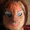 entropy_house: cat-marian