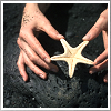 hold a starfish in my hand
