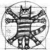 vetruvian cat