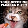 Killa: kitty is pleased
