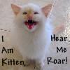 kahva: Kitten roar