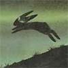 Bleck Rebbit