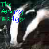 The Angry Badger