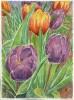 Mary Kay: Spring!