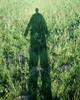 2000mm userpic