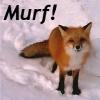 murf!