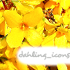 dahling_icons