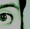 lalapolooza userpic