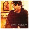 [CarPa] Y ahora qué?