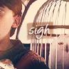 HP: Hedwig - Sigh