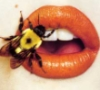 hamilton galleries bee's lips