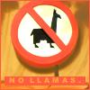 DISNEY: No Llamas