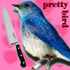 birdyummy