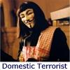 domestic terrorist