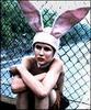 left blank intentionally: bunny boy