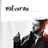 wolverine by mata