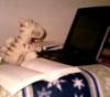 Sarah: study Tigger