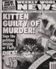 Kitten Guilty of Murder