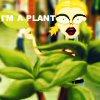 [o'grady] // I'm a Plant