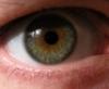 sisyphus238: eye