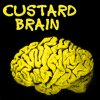 Catherine: custard brain