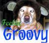 Gategrrl: Groovy Goldy
