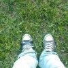 greenfishbowls userpic