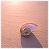 песок и ракушка