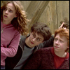 HP - Hermione/Harry/Ron