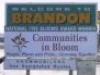 brandemon userpic