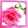 maridancingmoon userpic