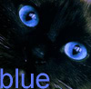 blue_blue userpic