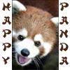 Pamela: Happy Panda