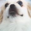 bugsywugsy userpic