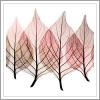 Meiko: leaves