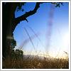 singing_waters userpic