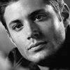 Thistle: Dean b&w by trystan830