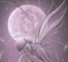 wistful fairy