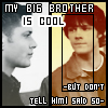 Port: cool brother