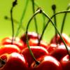 cherries {thedarksea}