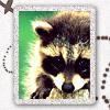 maffi userpic