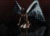 Miata Storm: темный ангел