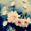 nancerella userpic