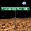 yellowrose76 userpic