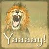 lion: yay!