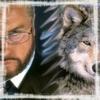 silverdragon54: alpha