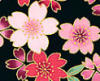 Tanya (Breau) Kearney: Blossoms