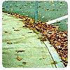 junebugstreet userpic