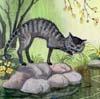 spring_cat