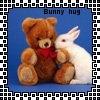 Bunny hugs